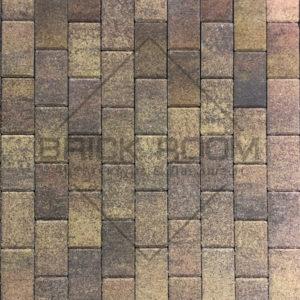 Тротуарная плитка 100*200*45 коллекция «Листопад» гранит